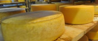 Comment faire cuire du fromage à la maison - choisissez une bonne fromagerie