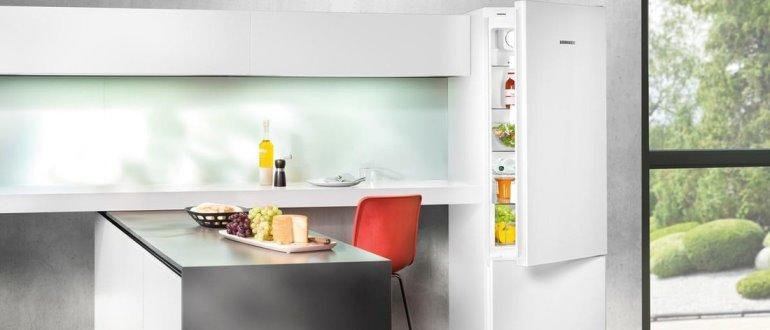 Le meilleur réfrigérateur avec la fonction de gel connue - choisissez